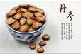 丹参酮IIA价格,丹参素原料生产,隐丹参酮厂家直销,丹参提取物品牌南京泽朗