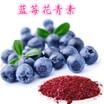 蓝莓提取物价格,蓝莓提取物蓝莓粉,蓝莓花青素,药食同源代加工