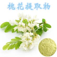 槐米提取物价格,槐米的提取工艺,槐花提取物品牌,槐米提取物生产厂家图片