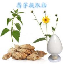菊芋提取物价格价格,菊芋提取物生产厂家,菊芋提取物多少钱,菊芋提取物品牌图片