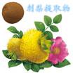 刺梨提取物,刺梨果粉,新资源食品,南京泽朗生产厂家
