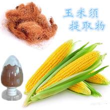 玉米须提取物价格,玉米须提取物介绍,固体饮料代加工,南京泽朗生产厂家图片