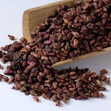 葡萄籽提取物批发,葡萄籽提取物哪个品牌,圣嘉德葡萄籽提取物图片
