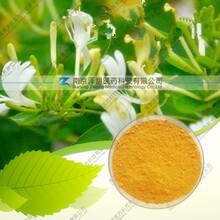 金银花提取物固体饮料代加工植物提取物图片