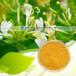 金银花提取物固体饮料代加工植物提取物