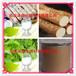 山药提取物固体饮料代加工植物提取物