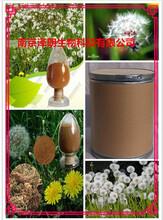 蒲公英提取物固体饮料代加工植物提取物