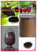 桑椹提取物固体饮料代加工植物提取物图片