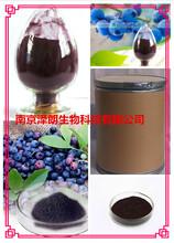 蓝莓提取物OEM代加工植物提取物图片