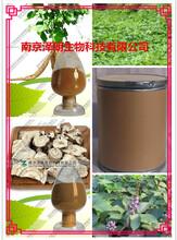 葛根提取物植物提取物OEM代加工10:1图片