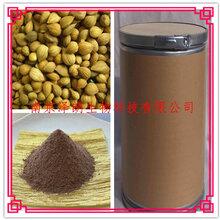 黄芪提取物10:1固体饮料代加工南京泽朗生物