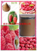 覆盆子提取物10:1固体饮料代加工南京泽朗生物