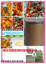 沙棘提取物10:1固体饮料代加工泽朗生物