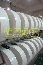 供应纯白色PET薄膜、PET白色薄膜、PET白色反光片图片