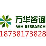 内江大型可行性报告乐山工业可行性研究报告编写中心187-3817-3828图片