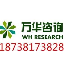 咸宁市宽带乡村示范工程可行性报告185-3819-1914图片