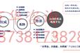 舟山普陀区定海区供应链项目申请报告外包服务185-3819-1914