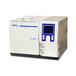 盘锦SP-2100A型气相色谱仪厂家直销
