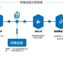 珠海市国际通期货考察地址商务服务国外牌照