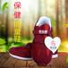孝心圆中老年能量运动鞋实力厂家全国免费招收代理无条件