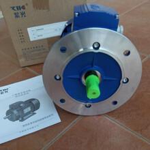 1.1KW紫光电机型号图片