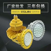 日化厂80W防爆LED泛光灯图片