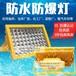 ZBD111防爆LED燈,100W防爆免維護節能燈圖片