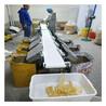 山东广昌海鱼自动称重分级机重量分拣设备