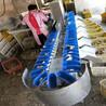 牡蠣自動分級機廠家