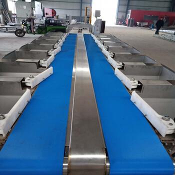 皮带式自动分级机厂家--山东广昌机械