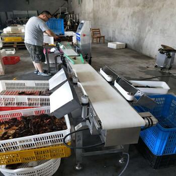 小龙虾重量分选机料盒式虾自动分级机哪家好--山东广昌