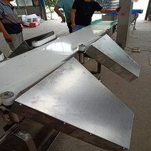 特价皮带式鱼类六级重量分级机供应商图片