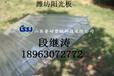 青州阳光板厂家,青州阳光板价格
