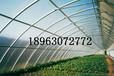 寿光阳光板公司寿光阳光板寿光阳光板性能