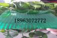 潍坊阳光板价格是多少潍坊阳光板潍坊阳光板价格