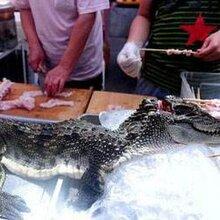 深圳烤全羊宴會、深圳自助餐宴會、深圳餐飲外賣配送圖片