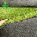 2公分景观绿化四色塑料草,室外铺设装饰人造草坪