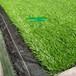 20mm单绿色养眼人造草坪,休闲景观环保人工草坪,耐晒耐磨假草坪
