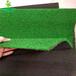 广州时宽批发价格1公分景观PP假草皮,阳台室内外卷丝深绿塑料草皮