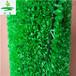 厂家批发价格景观假草坪,室内展览装饰塑料草仿真草皮