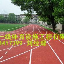 常德塑胶跑道造价多少,塑胶跑道施工每平方米成本图片