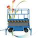 銷售剪叉式升降機移動升降平臺高空作業車電動升降機小型