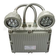 正安防爆双头led应急灯消防双头照明灯LED光源防爆应急照明灯