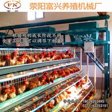 供应郑州,鹤壁地区全自动喂料、养鸡场自动喂料机、小型自动喂料机、优质自动喂料机图片