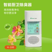 家用臭氧发生器果蔬解毒杀菌洗菜多功能活氧净化消毒机