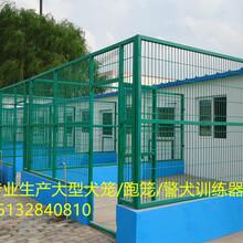 专业生产狗笼子,大型犬笼,跑笼,警犬训狗器材,可定做/上门安装