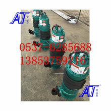 防爆水泵的价格BQS50-15-4图片
