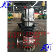 濟寧安泰水泵廠專業生產防爆不銹鋼潛水泵圖片