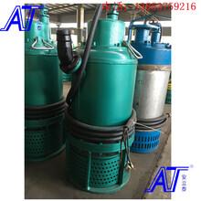 潍坊矿用潜水泵矿用排沙泵有专业的技术团队图片