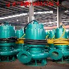工业污水处理市政工程防爆排污水泵运转灵活